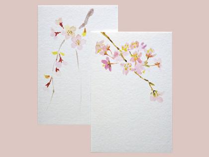 和紙のはがき-桜柄